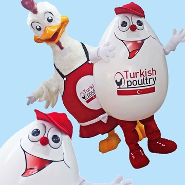 CHICK AND EGG - TURKISH POULTRY 5
