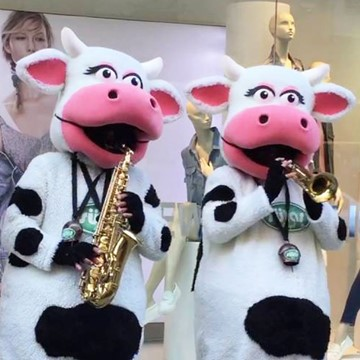 COW BAND - SÜTAŞ 7