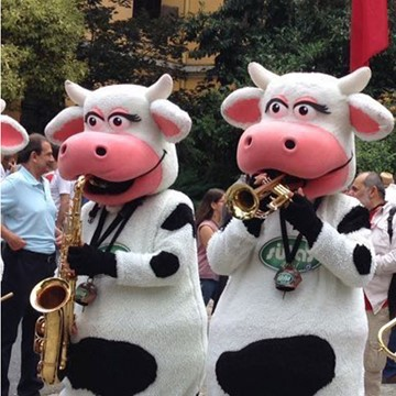 COW BAND - SÜTAŞ 3