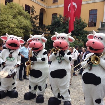 COW BAND - SÜTAŞ 9