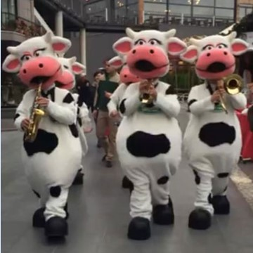 COW BAND - SÜTAŞ 16