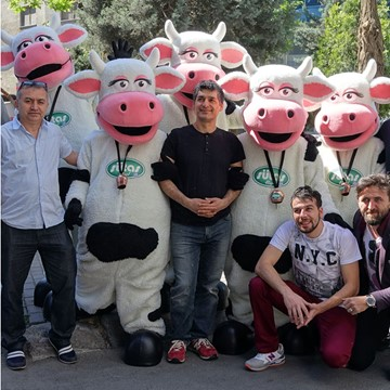 COW BAND - SÜTAŞ 17