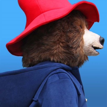 BEAR - PADDINGTON 3