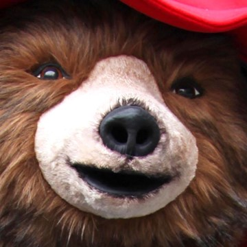 BEAR - PADDINGTON 2