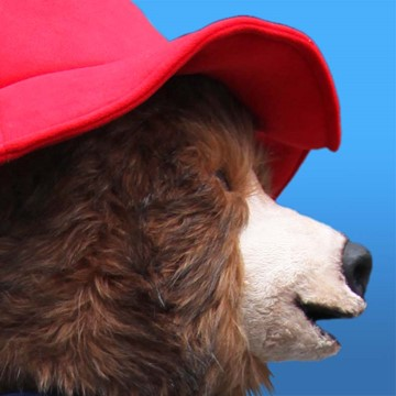 BEAR - PADDINGTON 6